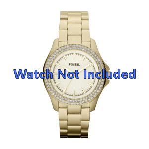 Fossil watch band AM4453