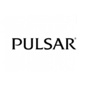 Pulsar watch band original